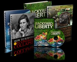 Backyard-liberty-book