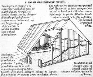 greenhouse2-300x249