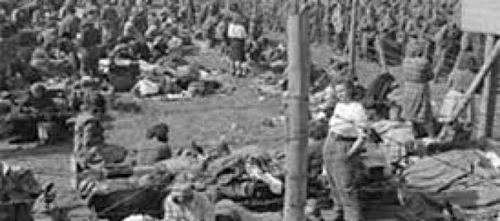 genocide-2a-890x395_c