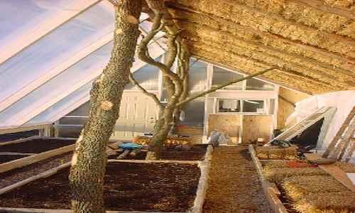 Biointensive Passive Solar Straw Bale Greenhouse