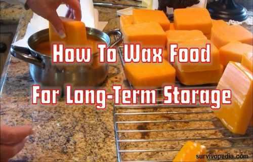 wax food