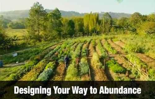 Way to Abundance
